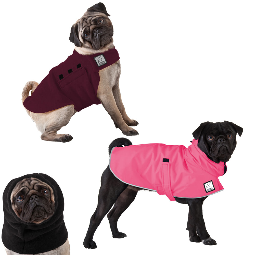 Voyagers K9 Apparel Pug Warm Climate Combo