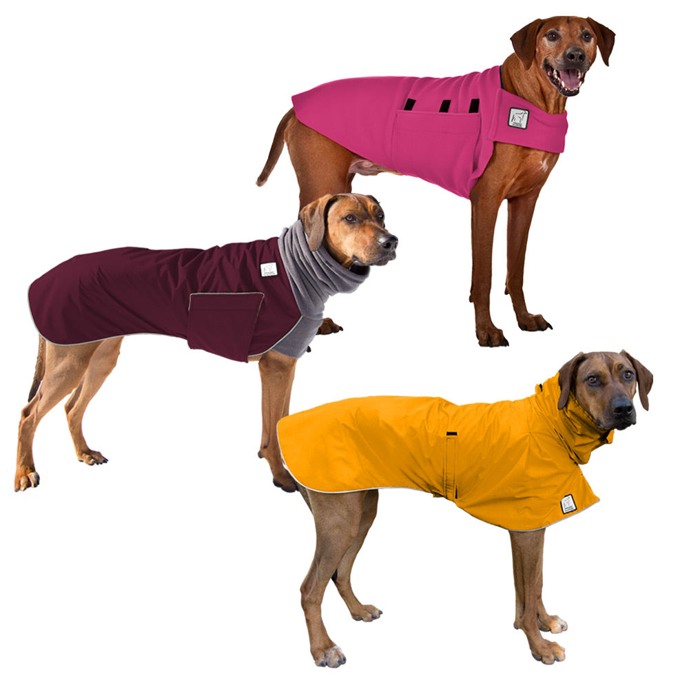 Voyagers K9 Apparel Rhodesian Ridgeback All Weather Combo