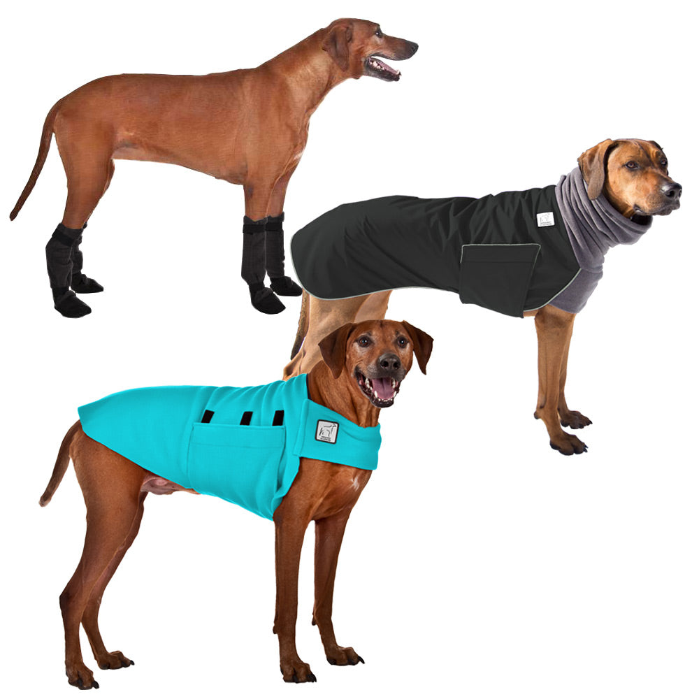 Voyagers K9 Apparel Rhodesian Ridgeback Cold Climate Combo