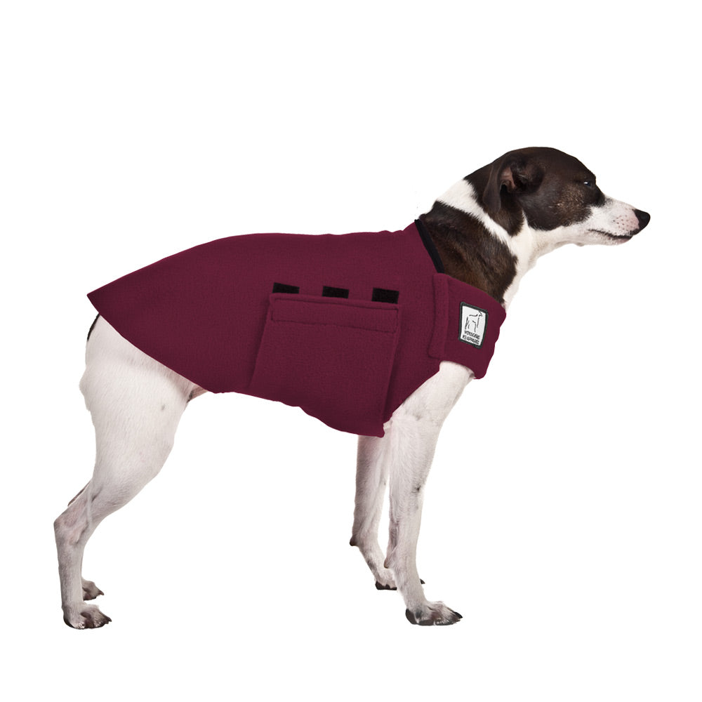 Voyagers K9 Apparel Rat Terrier Tummy Warmer