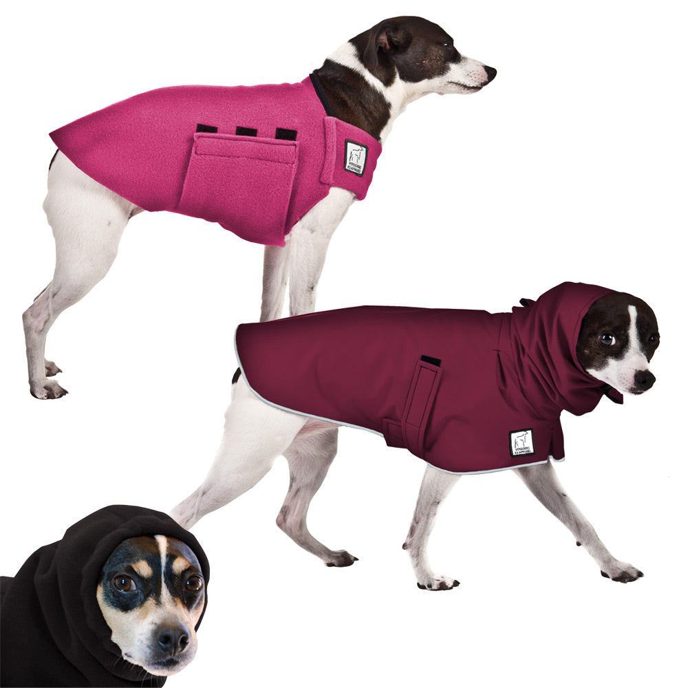 Voyagers K9 Apparel Rat Terrier Warm Climate Combo