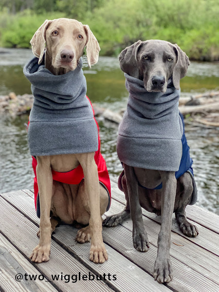 Voyagers K9 Apparel Weimaraner Winter Coats