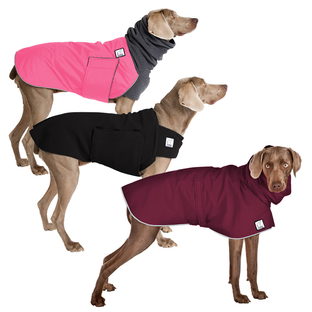 Voyagers K9 Apparel Weimaraner All Weather Combo