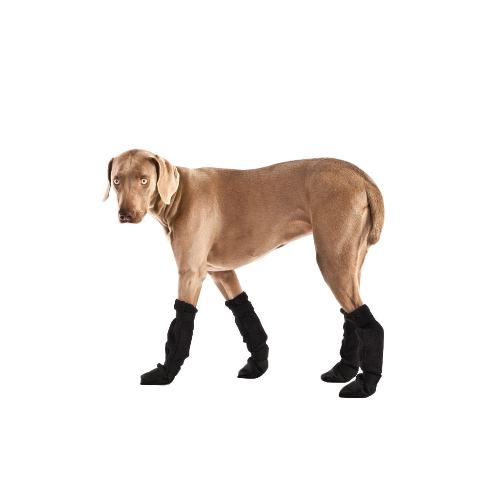 Voyagers K9 Apparel Weimaraner Dog Booties