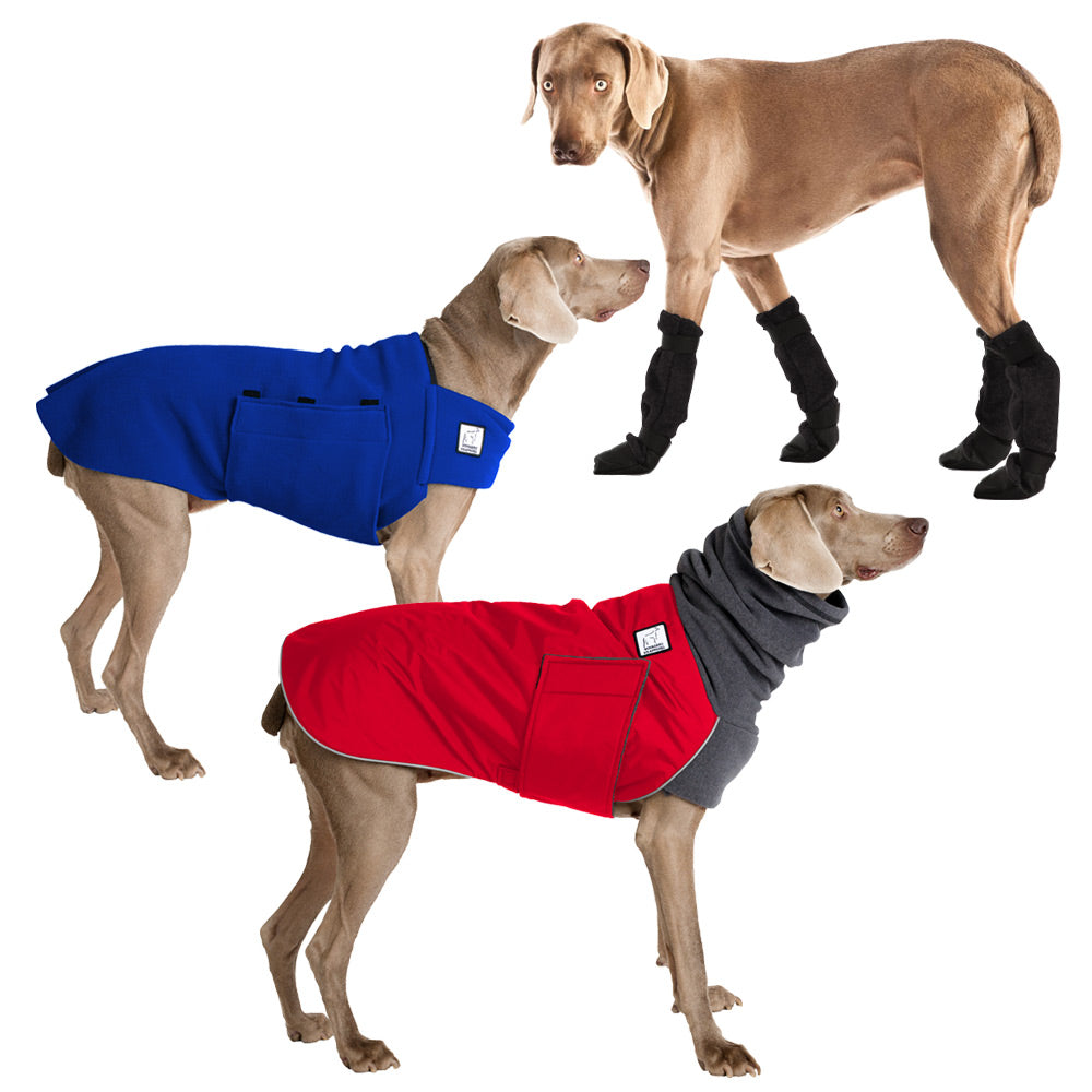 Voyagers K9 Apparel Weimaraner Cold Climate Combo