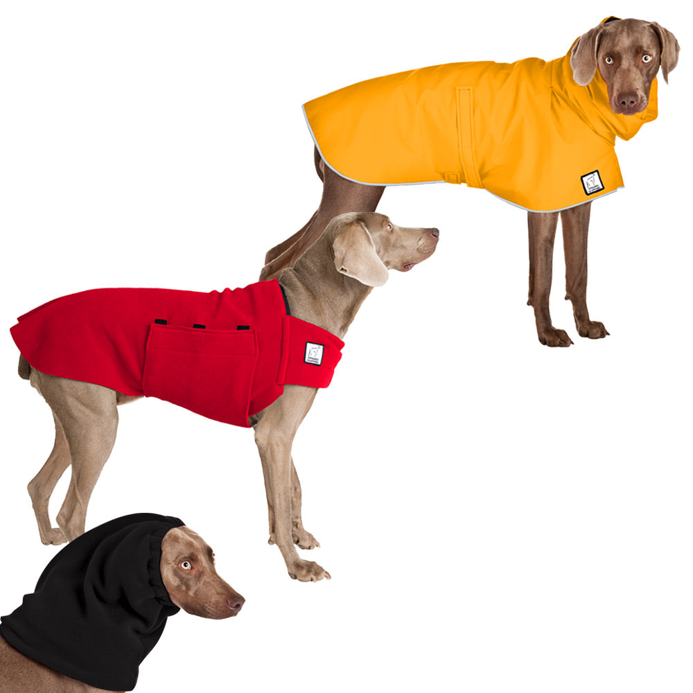 Voyagers K9 Apparel Weimaraner Warm Climate Combo
