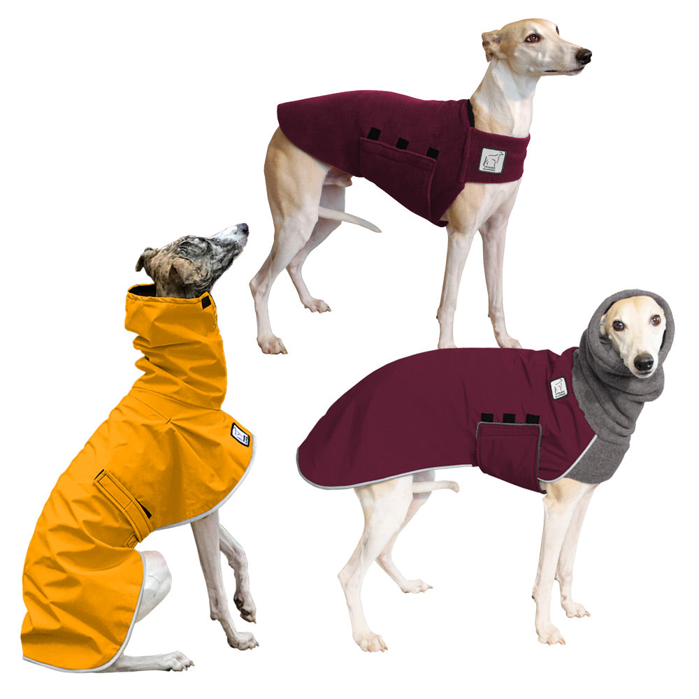 Voyagers K9 Apparel Whippet All Weather Combo