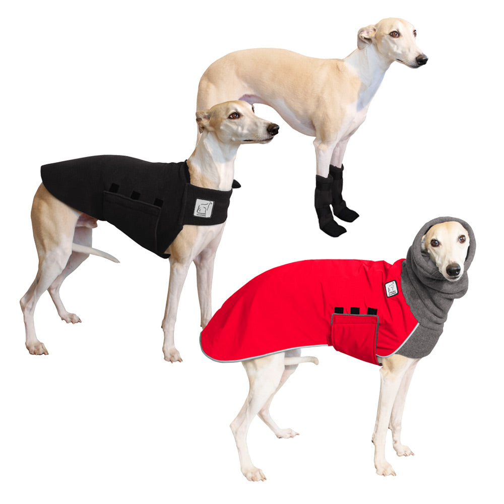 Voyagers K9 Apparel Whippet Cold Climate Combo