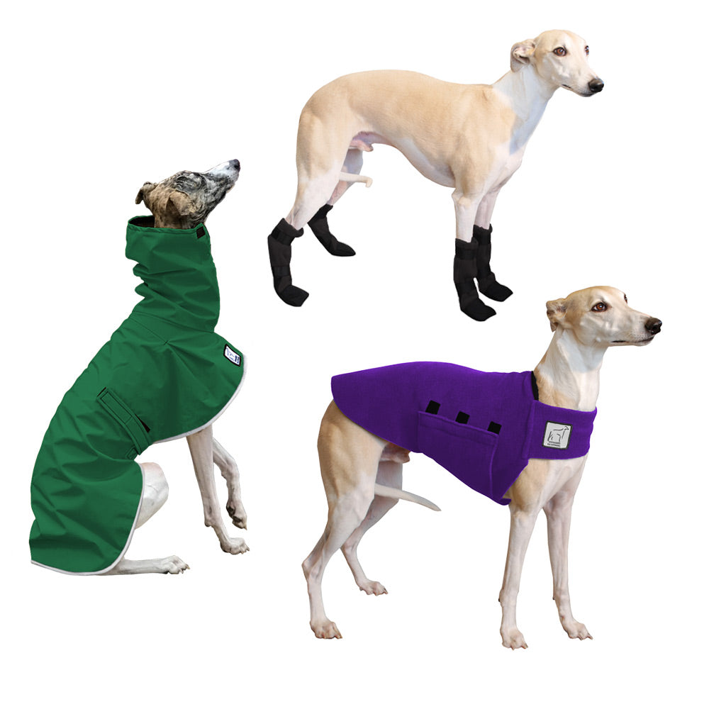 Voyagers K9 Apparel Whippet Moderate Climate Combo