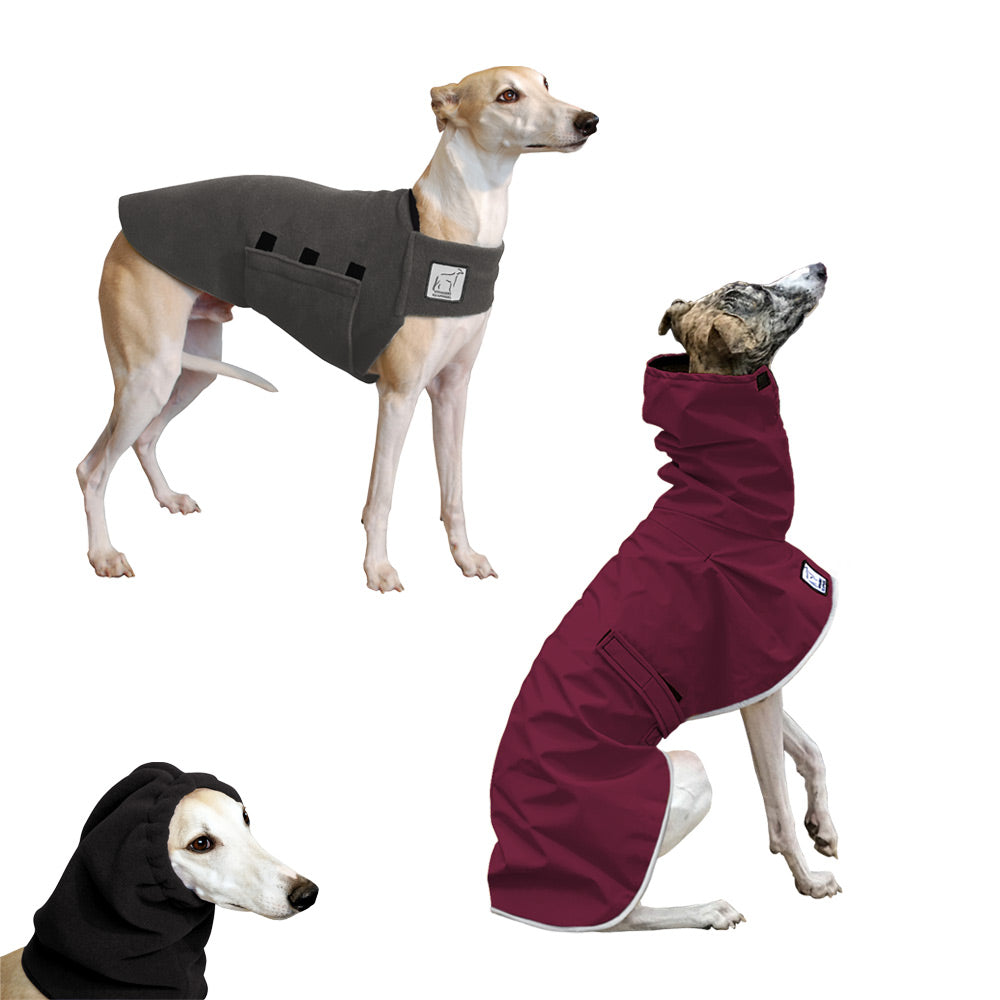 Voyagers K9 Apparel Whippet Warm Climate Combo