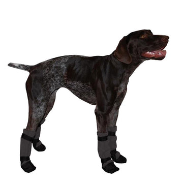 German Shorthaired Pointer Dog Booties - Voyagers K9 Apparel