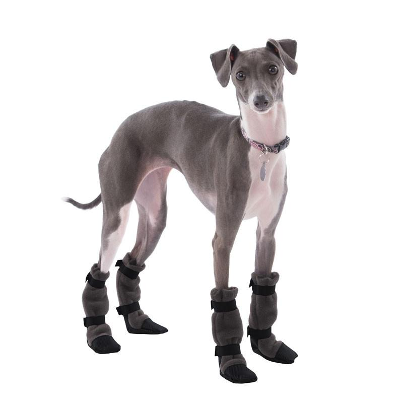 italian greyhound dog booties stay for traction and