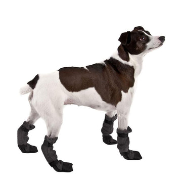Rat Terrier Dog Booties - Voyagers K9 Apparel