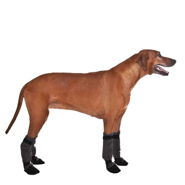 Rhodesian Ridgeback Dog Booties - Voyagers K9 Apparel