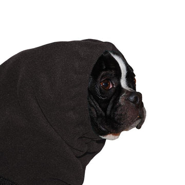 Boston Terrier Hood - Voyagers K9 Apparel