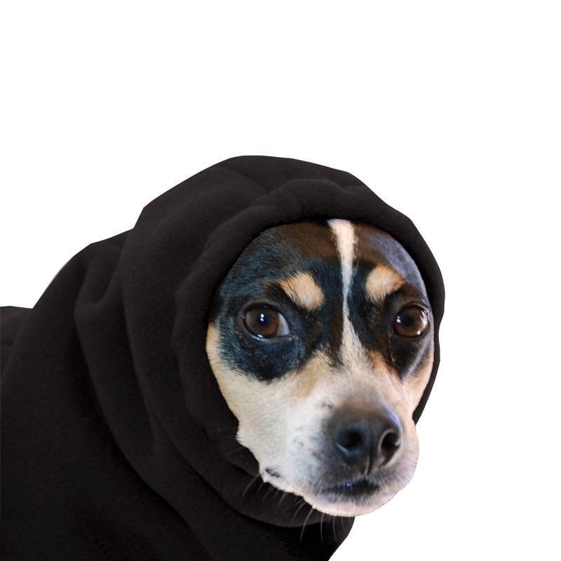 Rat Terrier Hood - Voyagers K9 Apparel