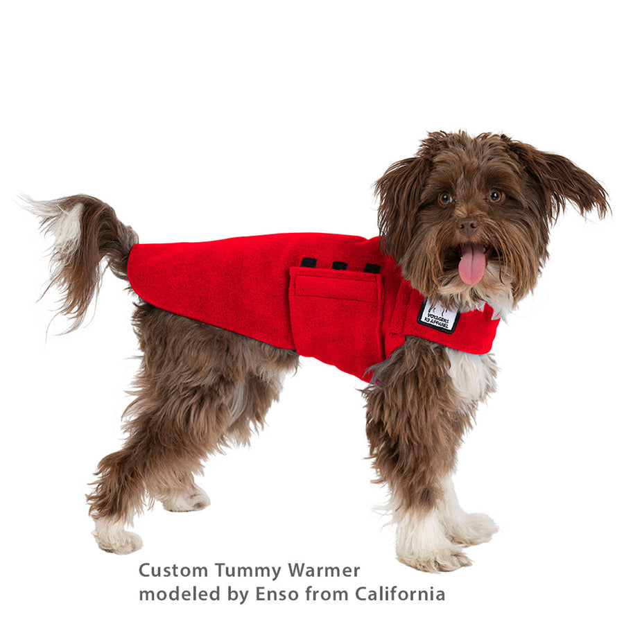 Custom Tummy Warmer - Voyagers K9 Apparel