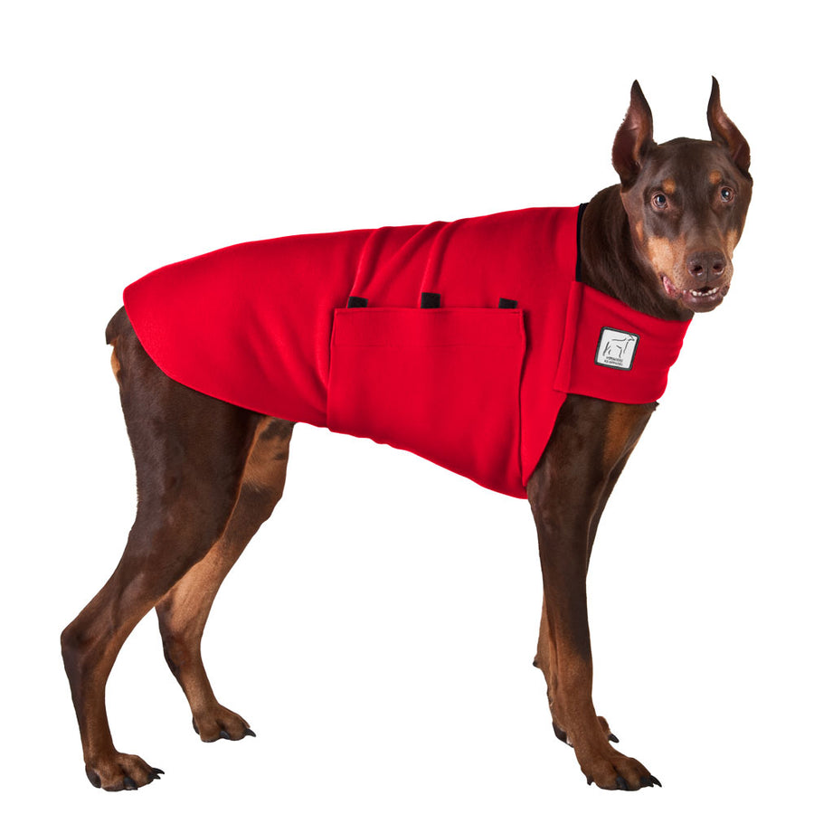 Doberman Pinscher Tummy Warmer - Voyagers K9 Apparel