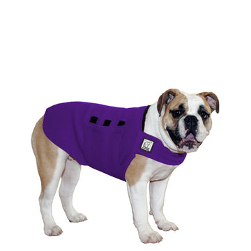 English Bulldog Tummy Warmer - Voyagers K9 Apparel