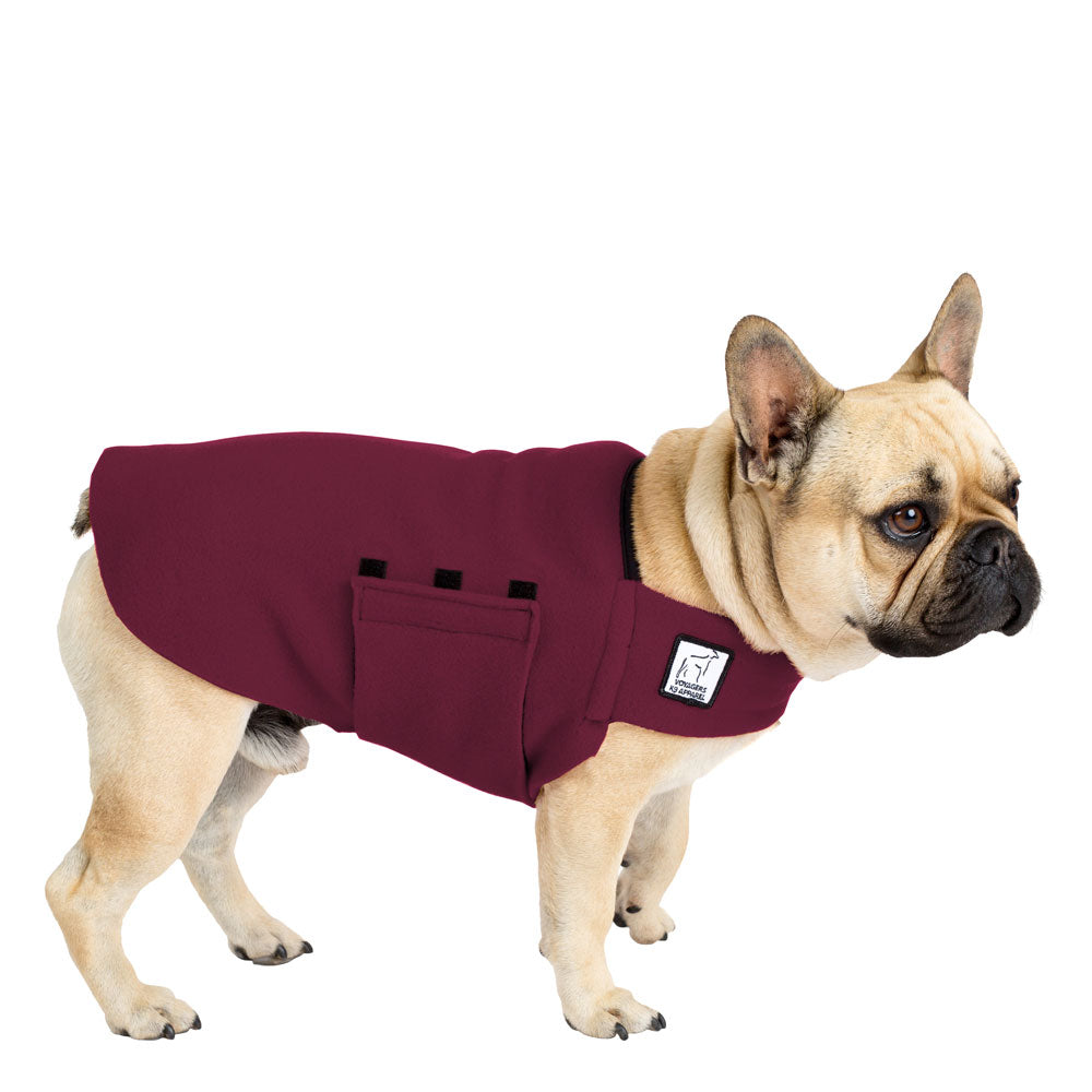 French Bulldog Tummy Warmer - Voyagers K9 Apparel