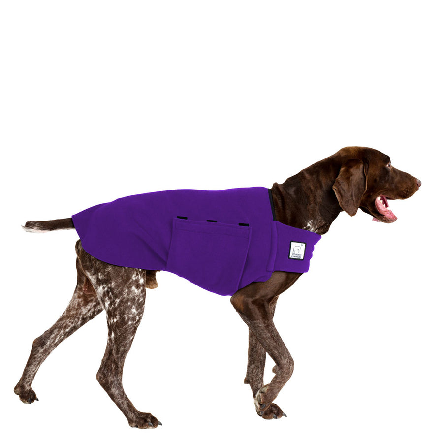 German Shorthaired Pointer Tummy Warmer - Voyagers K9 Apparel