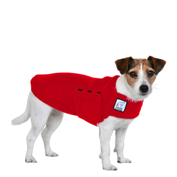 Jack Russell Terrier Tummy Warmer - Voyagers K9 Apparel