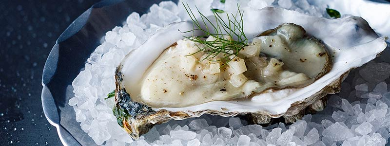 Oysters with Apple Fennel Mignonette