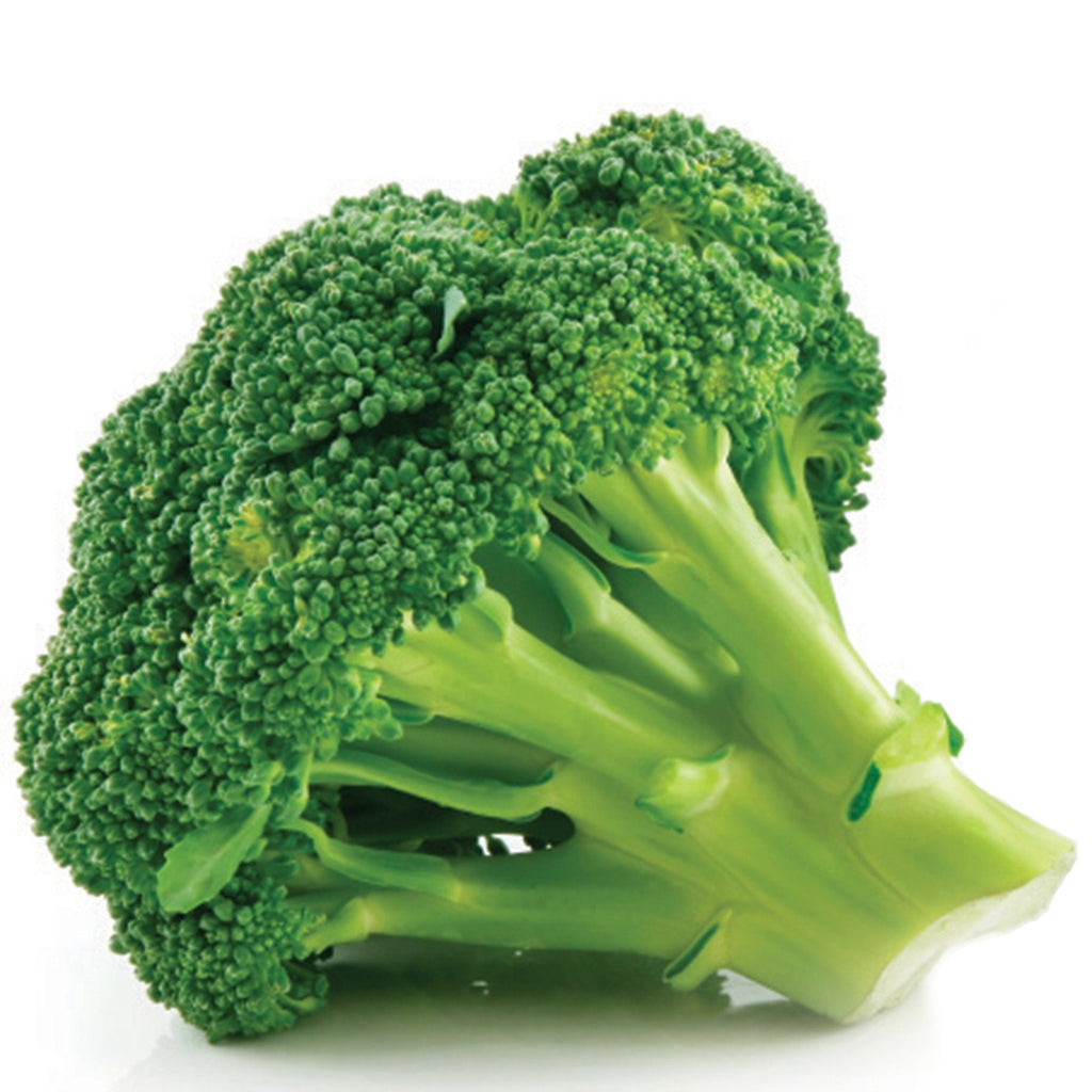 Amoretti Broccoli Extract W.S.