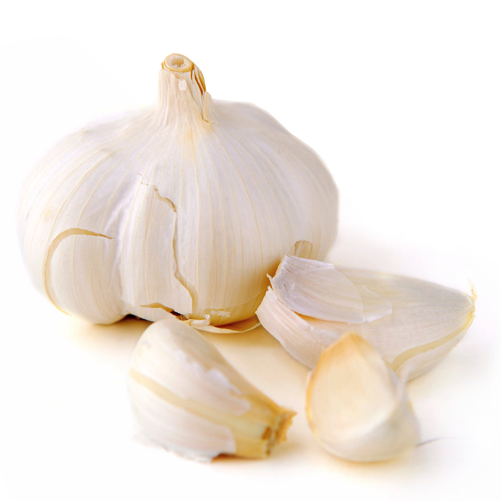 Garlic Oil Extract Oil Soluble