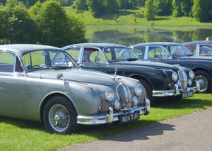 Hamilton Classic enjoy the Summer Jaguar Festival at Blenheim Palace