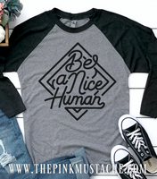 Be A Nice Human Raglan Tee / Be A Nice Human Raglan Tee / Youth and Adult Sized Tee/ Mommy and Me /