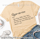 Funny Quarantine Definition Tee / Bella Canvas Tee/ Quar-An-Tine - Noun
