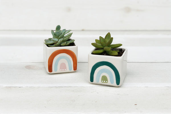 Small Square Rainbow Planter