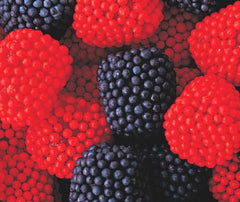 Gummi Blueberries & Strawberries 10LB Bulk