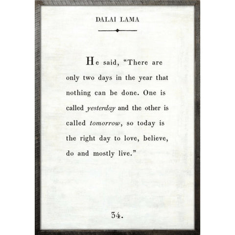 Dalai Lama - Book Collection Art Print