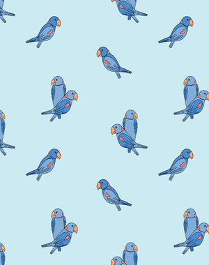 Alexandrine Parakeet Small Sky  Wallpaper