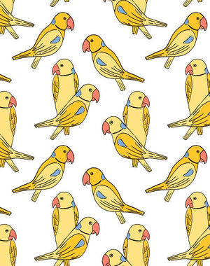 Alexandrine Parakeet Yellow  Wallpaper