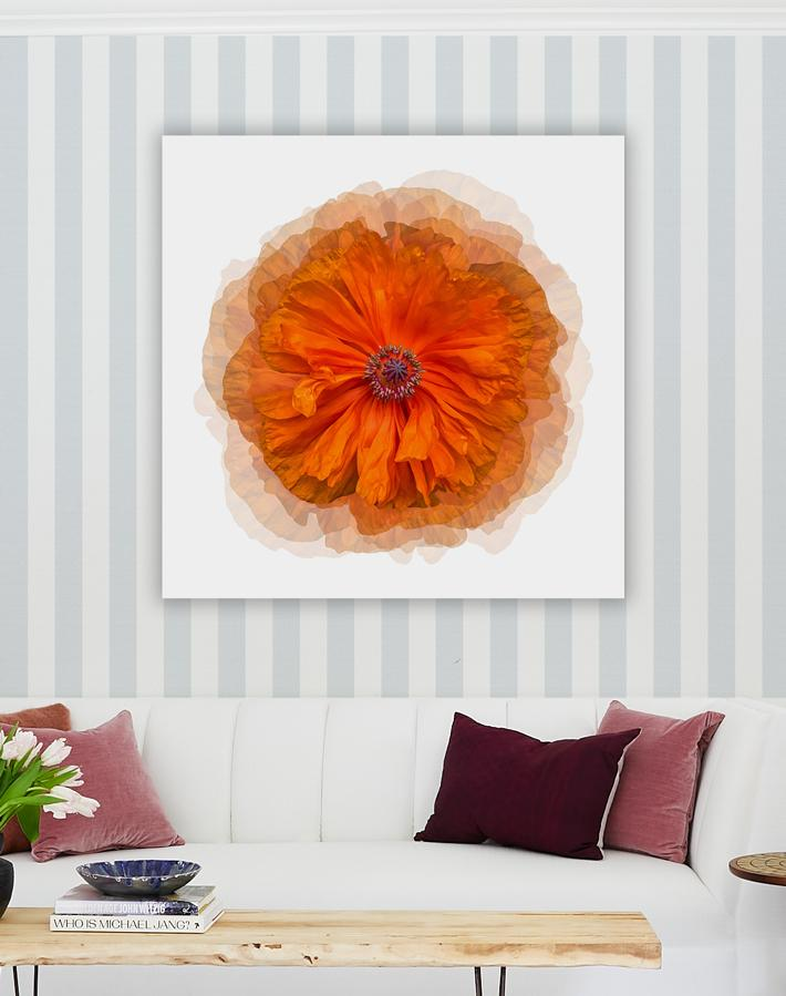 Amber Peony on Acrylic by Nathan Turner