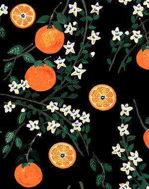 Arance Dolci - Black Wallpaper by Carly Beck - Wallshoppe Removable & Traditional Wallpaper