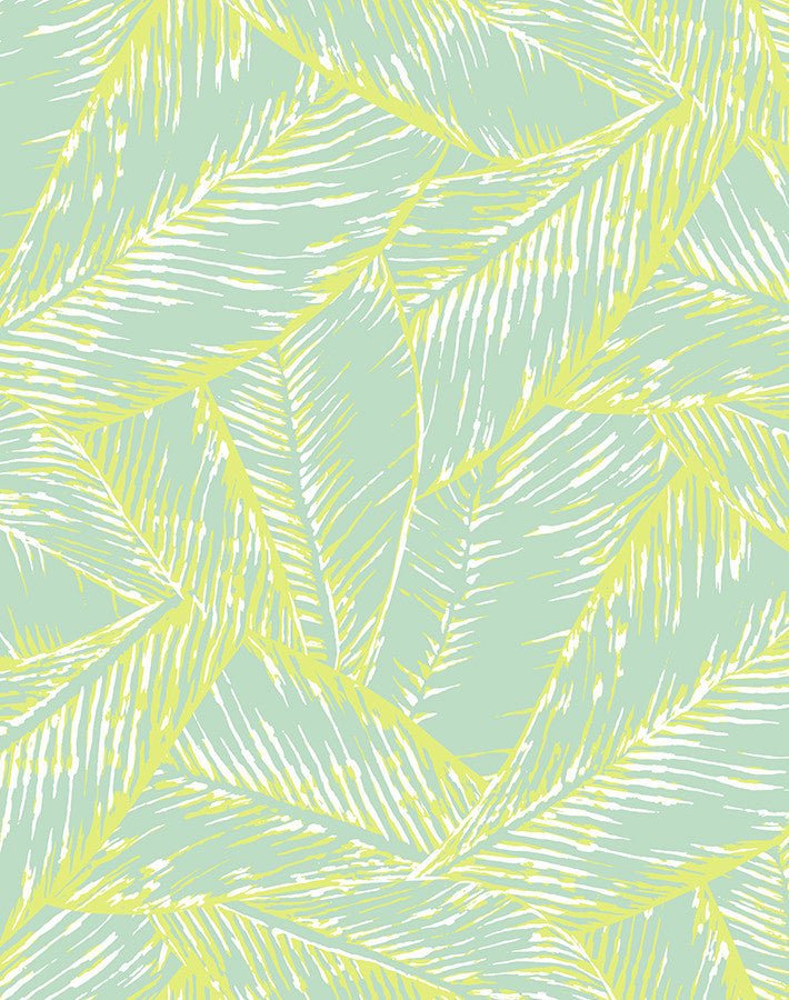 Best Fronds Wallpaper - Keylime