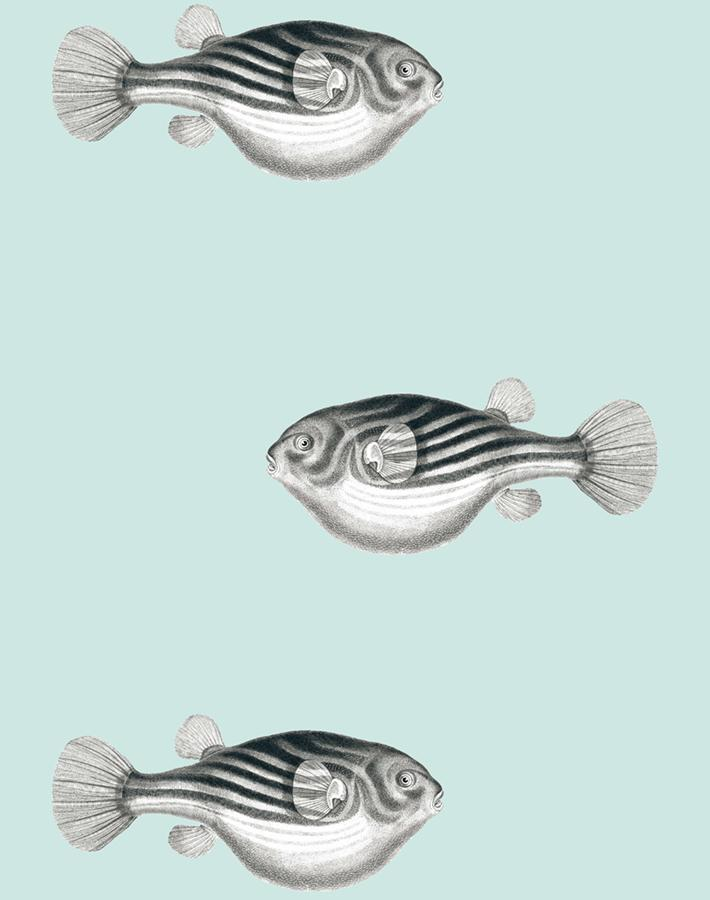 Blowfish Seafoam  Wallpaper