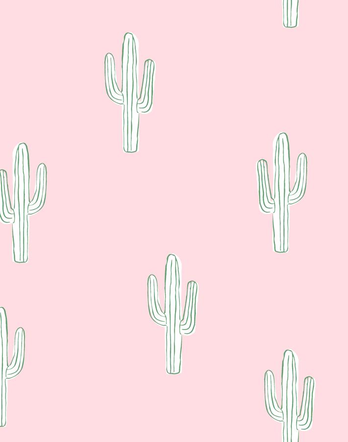 Cactus Ballet Slipper  Wallpaper