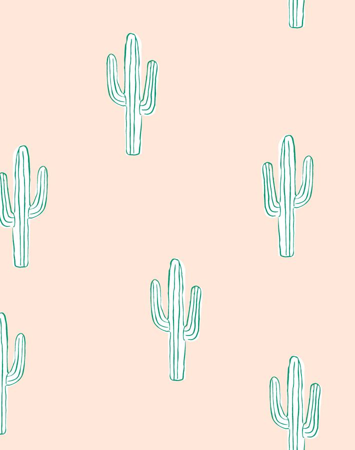 Cactus Peach  Wallpaper