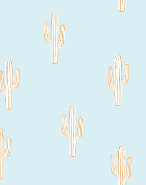 Cactus Pushpop  Wallpaper