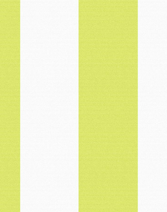 Candy Stripe Wallpaper - Lime - Wallshoppe