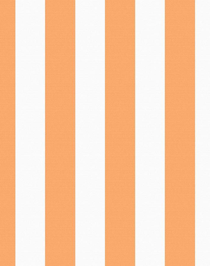 Candy Stripe Creamsicle  Wallpaper