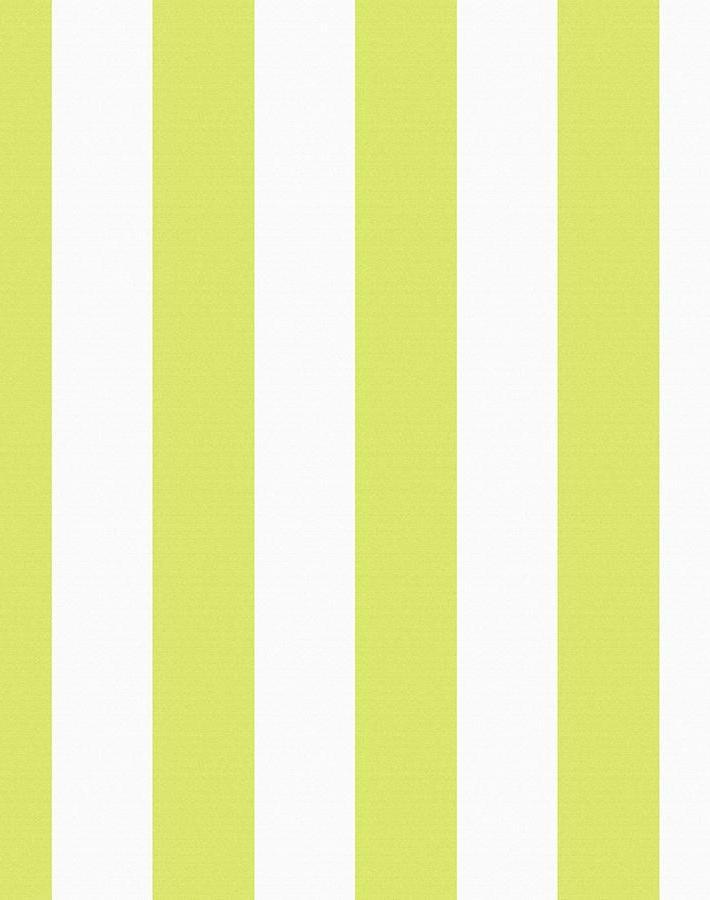 Candy Stripe Lime  Wallpaper