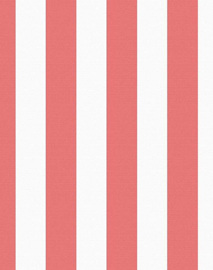 Candy Stripe Watermelon  Wallpaper