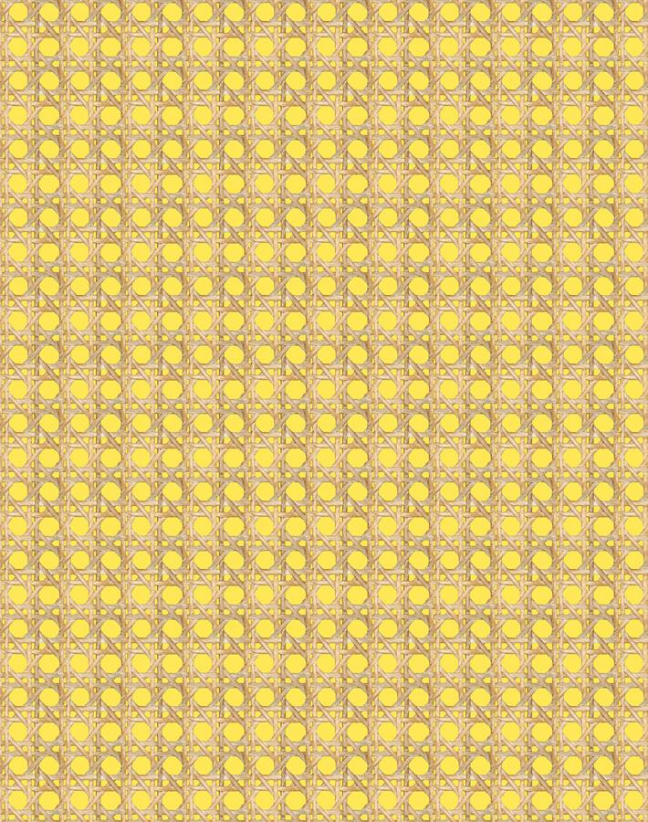 Caning Daffodil  Wallpaper