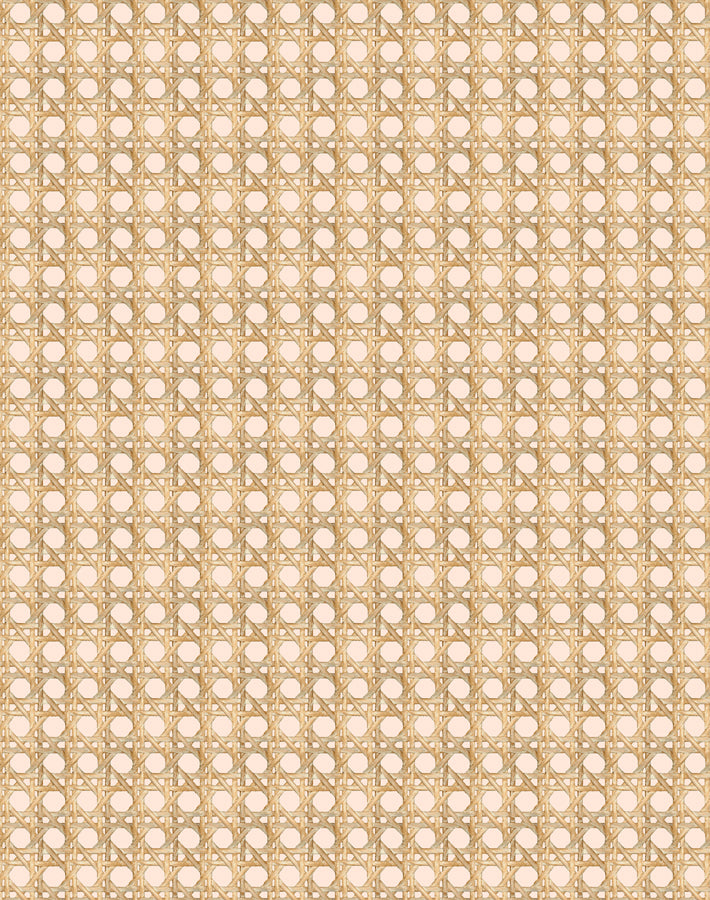Caning Removable Wallpaper - Peach - Wallshoppe